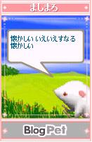 mashimaro050521