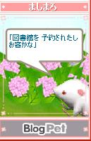 mashimaro050608