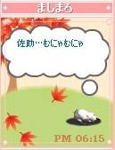 mashimaro051230
