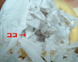 Bunta0801275