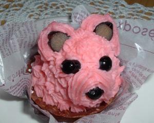 Cake0905062