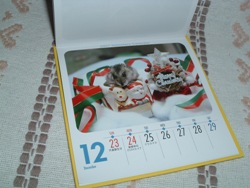 Calendar0610282