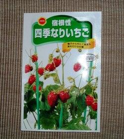 Ichigo060402