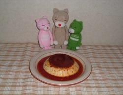 Pudding0704221